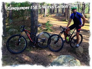 Stumpjumper FSR S-Works Carbon 29er